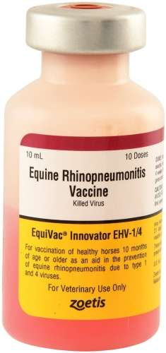 Equivac EHV 1/4 Vaccine (Rhino-killed) Zoetis