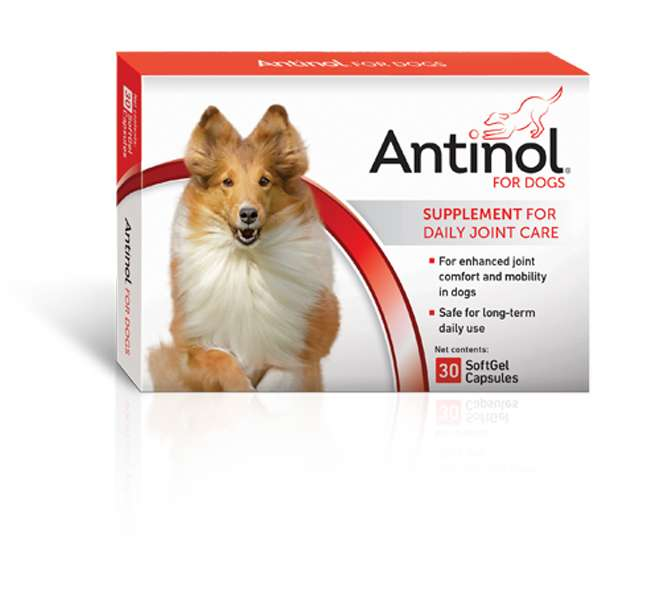 Antinol SoftGel Capsules for Dogs