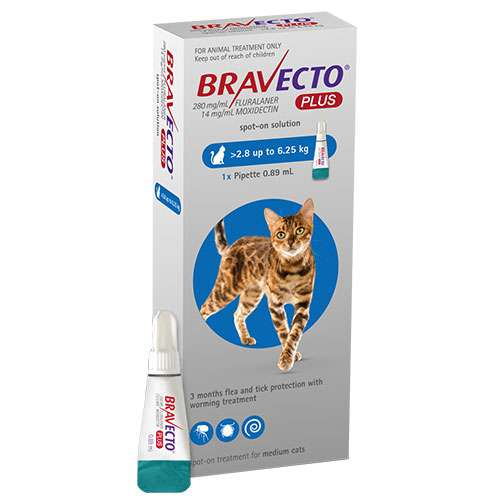 Bravecto Plus Feline (Blue) Single Dose