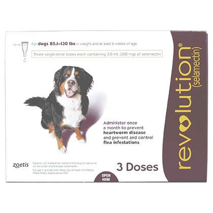 Revolution Canine (Purple 85-130 lb)
