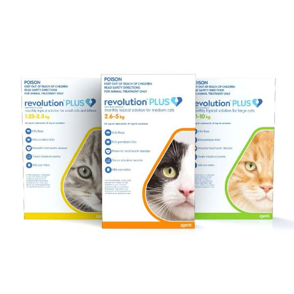Revolution Plus Feline (Gold 2.5-5.5 lb)