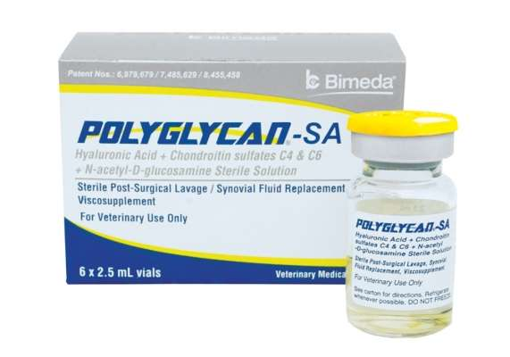 Polyglycan (HA/Chondroitin Sulfates C4 & C6/N-Acteyl-D-Glucosamine)